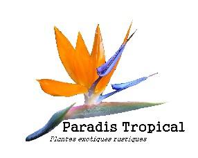 Pépinière Paradis Tropical  Fouquescourt
